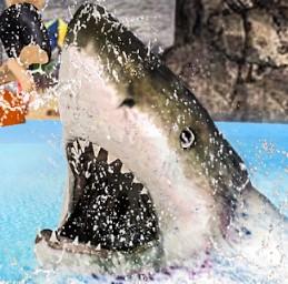 饥饿鲨鱼世界3.1.2