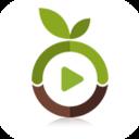 种子助手安卓版v1.1.4