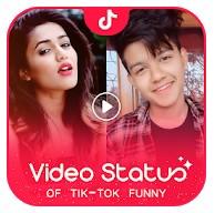 TikTok Video Status软件v1.5