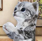 手机养猫动态壁纸软件v4.6.2