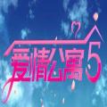 爱情公寓5互动视频完整版v1.0