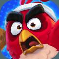 愤怒的小鸟网球安卓版v1.0.0