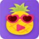 菠萝蜜app播放器v1.0