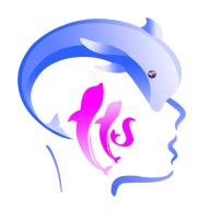 脑力中国安卓版v1.0.1