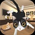 逃离猫咪音乐室官方版v1.1手机版