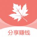 枫叶网赚钱版v8.3