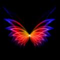 动态壁纸秀秀软件v1.0安卓版