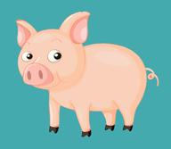 小猪电视app安卓版v6.2.0最新版