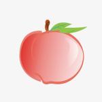 桃子语音appv1.0.1